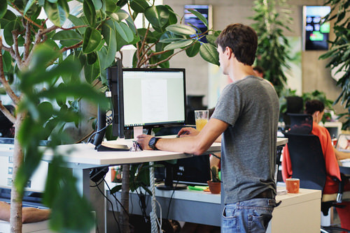 standing desk productivity