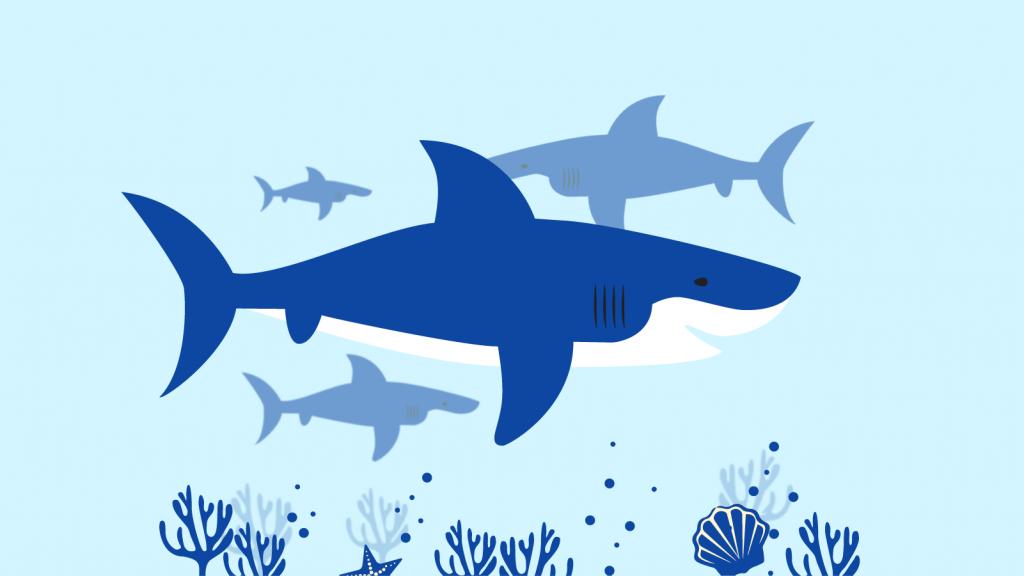 halo 2 shark client